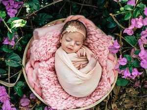 GALLERY: 500+ adorable Mackay bubs born in 2018