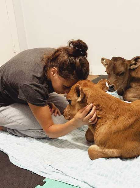 The video has people divided, with some praising her for trying to comfort the cow and others slamming her for her actions. Picture: Leah Doellinger