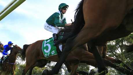 Brock Ryan will chase another win on Reflectivity at Rosehill Gardens. Picture: Getty Images