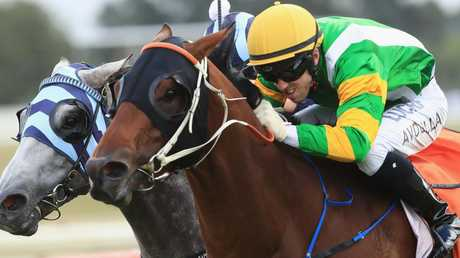Glenall is ready to fire first-up in the Kensington Stakes at Flemington. Picture: Getty Images