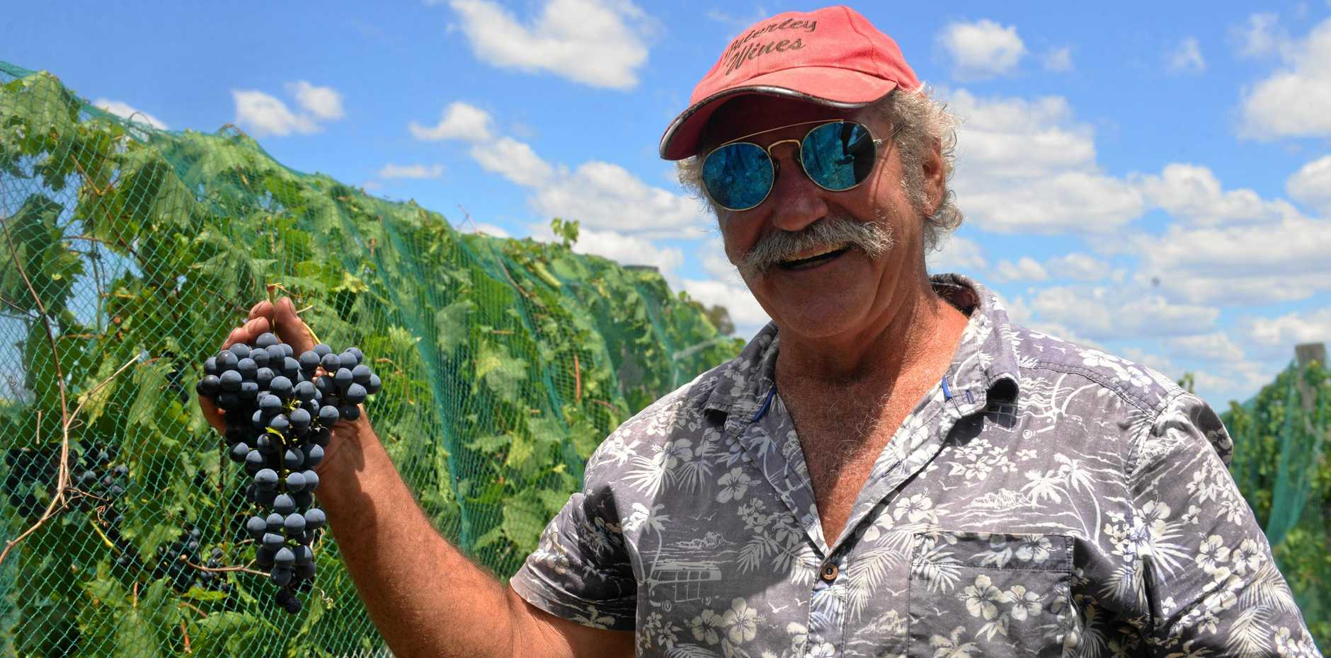 HEARD IT THROUGH THE GRAPEVINE: Vintner Tony Brierley at the Childers winery Brierley Wines.