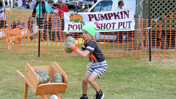 Pumpkin festival launches new site