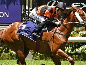 Trainer eyes tilt at Blue Diamond