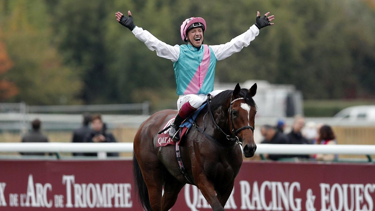 Enable won Prix de l'Arc de Triomphe and US Breeders' Cup Turf last year. Picture: AP