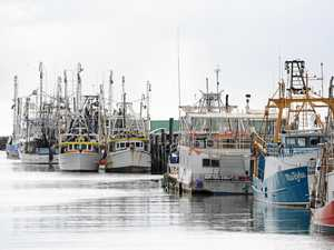 Fishing reforms slammed by state's peak seafood body