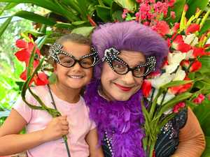 GALLERY: Plant lovers paradise at Ginger Festival