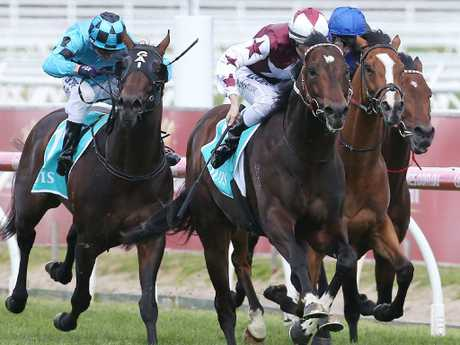 Land Of Plenty showed his class with success in the Toorak Handicap over the same distance as the All-Star Mile.