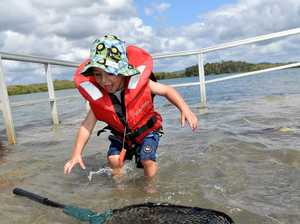 King tide on the Maroochy River. Max Harris,3, on