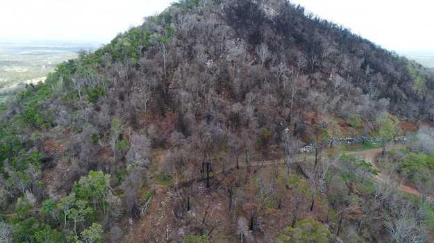 Fire damage on Mt Etna.