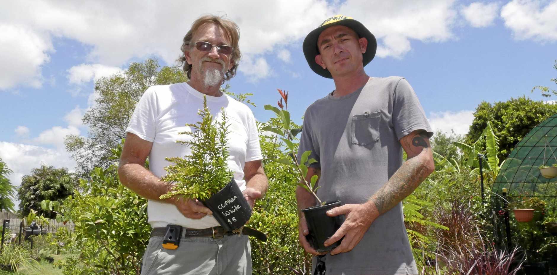 HOBBY GROWS: Lee Spindler and employee Aaron Turvey at   Granville NewLeaf Garden Club Nursery.