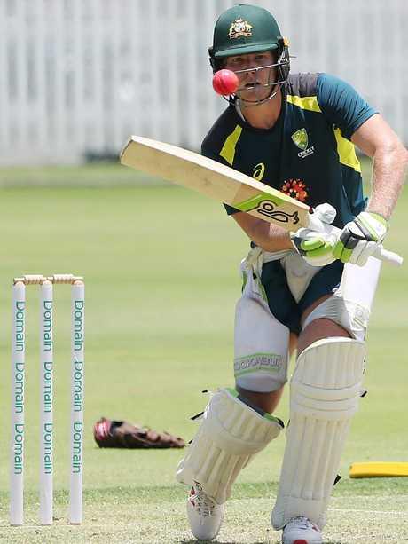 Pucovski is one of Australia's great hopes. (Peter Wallis)