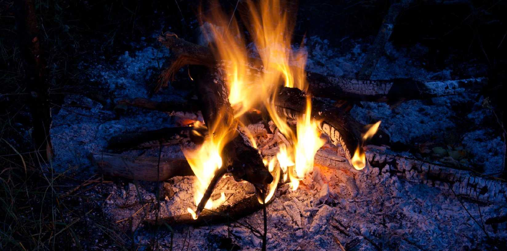 BANNED: Campfires and barbecues using wood, charcoal or other solid fuels have been banned in all State forests from tomorrow.