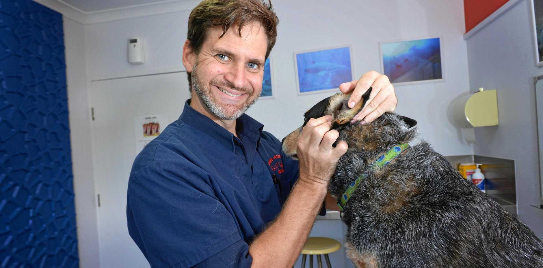 Gympie Veterinary Services vet Shannon Coyne.