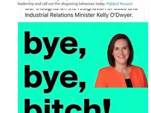 'Bye bye b*tch': LNP responds to fake news accusations