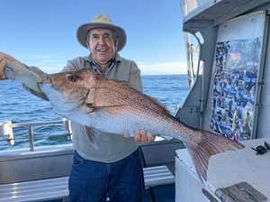 GONE FISHING: Heavy cobias give anglers a last chance