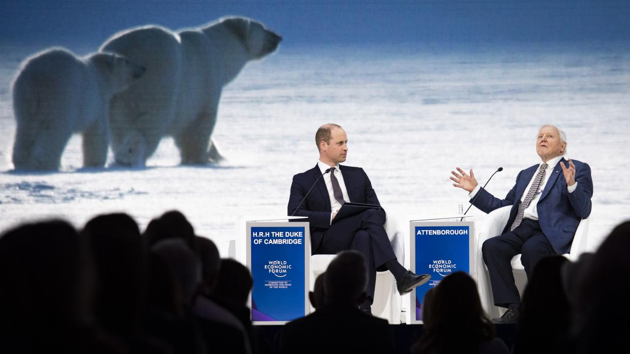 Britain's Prince William, left, and Sir David Attenborough, broadcaster and natural historian, attend a session at the annual meeting of the World Economic Forum. Picture: Gian Ehrenzeller