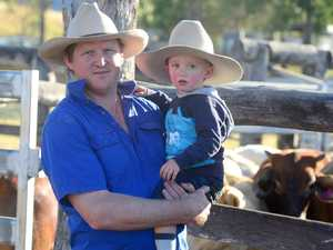 Queensland farmer burnt by permit debacle
