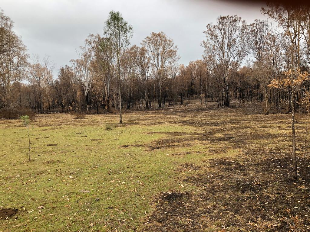 Picture supplied by Tom Marland of his burnt out property where the fire has stopped by itself coming out into open grass land. When the fuel loads reduced, so did the flame and fire intensity