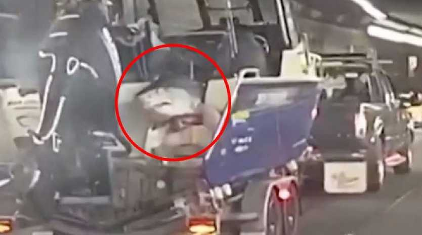Shocked commuters spot shark hanging off back of boat. Picture: 7 News