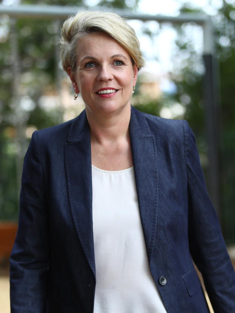 Tanya Plibersek has spoken to news.com.au about the realities of being a woman in politics. Picture: Hollie Adams