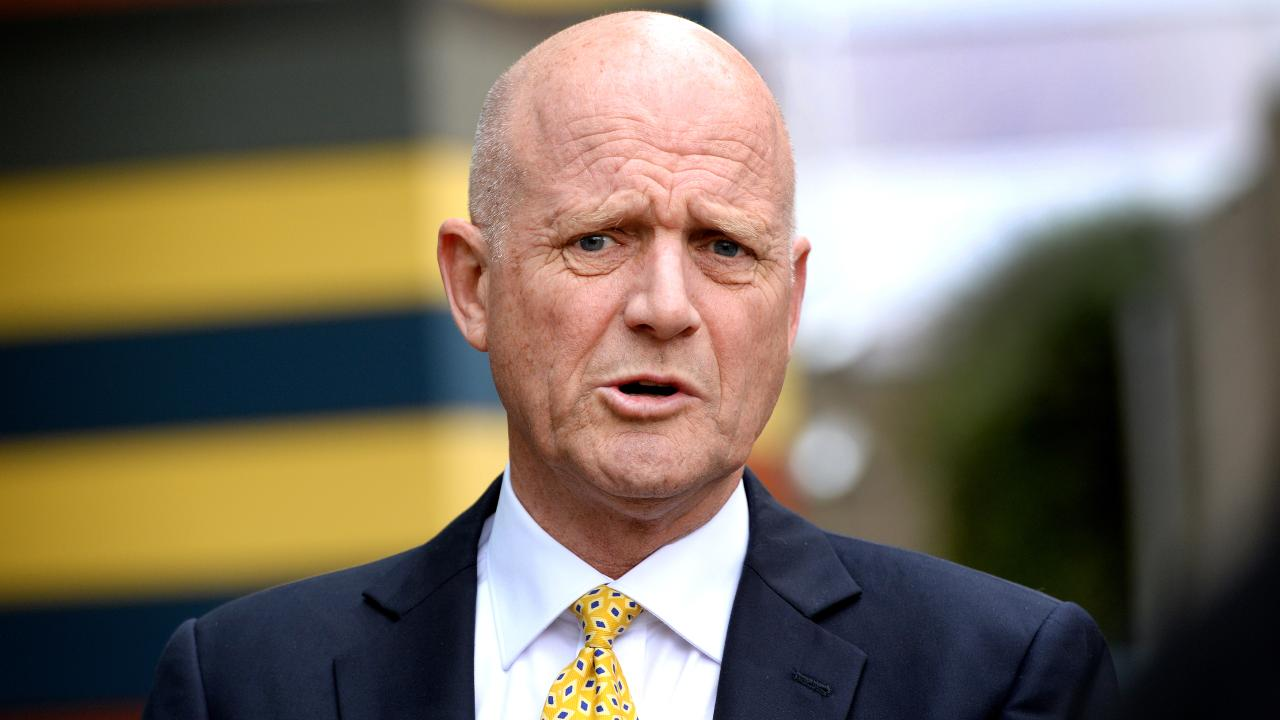 Senator David Leyonhjelm was criticised for his disparaging remarks about Senator Sarah Hanson-Young in the chamber and in the media. Picture: Mark Brake/AAP