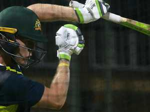 Ponting pushing for Pucovski to play