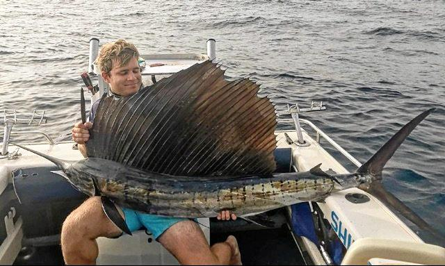 Coffs Harbour fisherman Daniel Curzon caught a sailfish while live baiting off South Solitary Island.