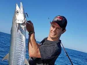 The mackerel might be weeks away