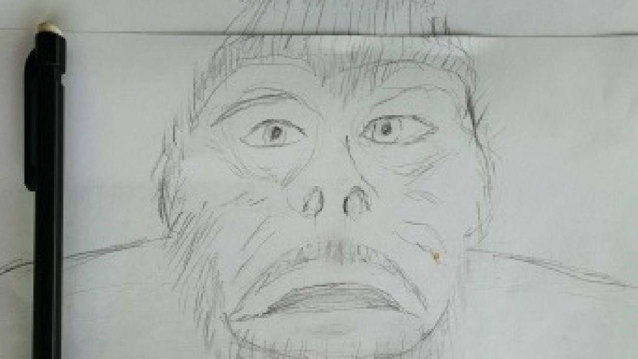 Witness sketch of the Yowie.
