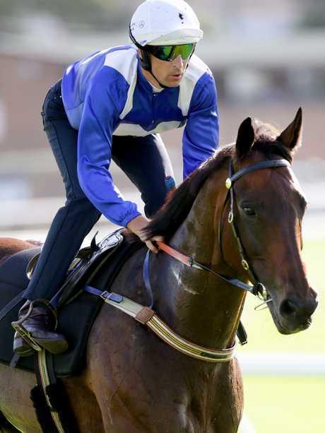 Hugh Bowman riding Winx. Picture: Jonathan Ng