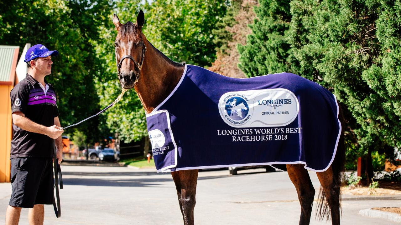 Sydney super mare Winx has been co-named the World's Best Racehorse in London. Picture: Jonathan Ng