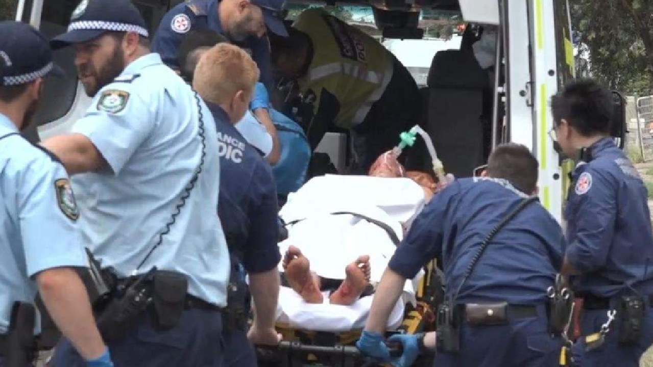Police arrived to find a man with several bites. Picture: ABC