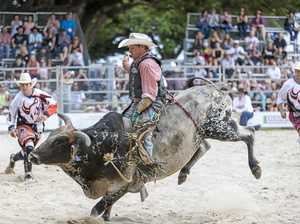 Gympie cowboy is ready for bull n bronc next month