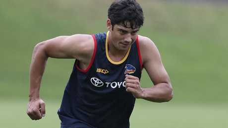 Shane McAdam tries to impress at Crows training. Picture Sarah Reed