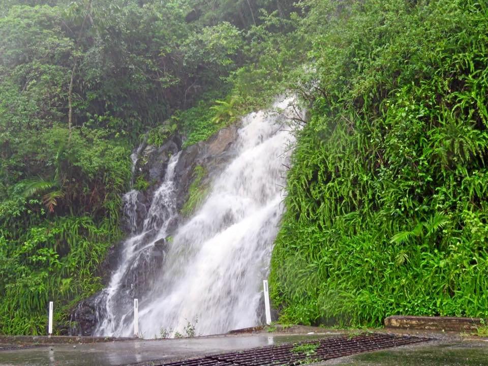 A waterfall along Eungella Range road.
