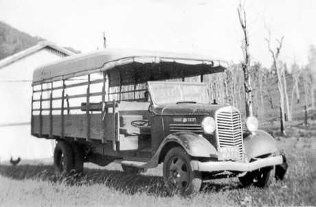 M862897 - Maple Leaf cream truck, Conondale, 1930s.