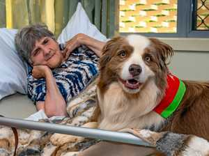 Dogs bring smile therapy to Baillie Henderson patients