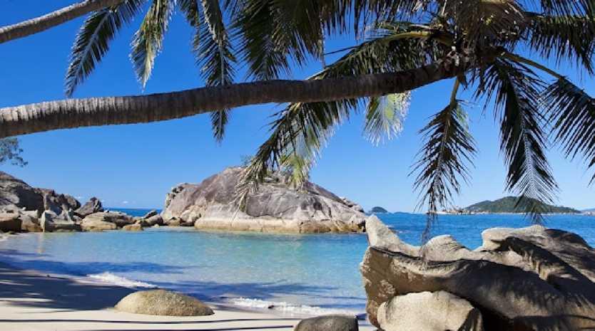 Bedarra Island is looking for new island caretakers