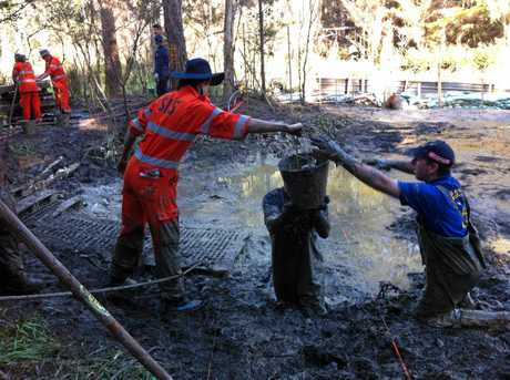 HUNT: Police and SES search for clues for Daniel Morcombe.
