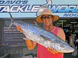 Where the big spanish mackerel will bite this weekend