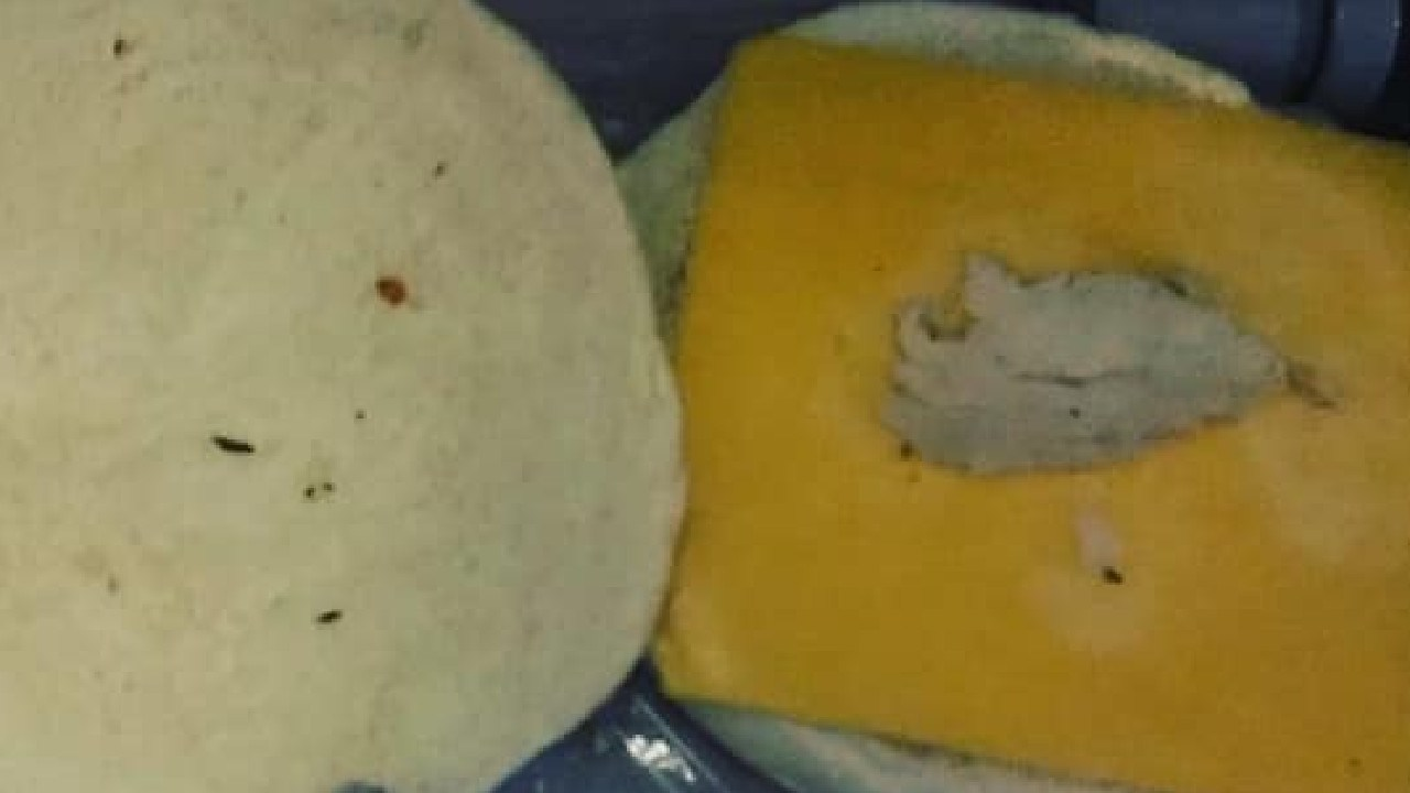The chicken sandwich a passenger from Dublin to Brisbane received on his Emirates flight.