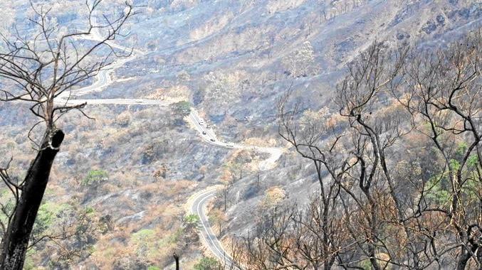 Eungella Range charred from bushfires.