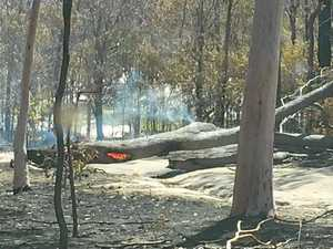 Falling trees, 'smouldering limbs' a major fire site hazard