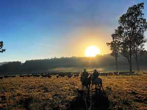 Stunning photos from across the Northern Rivers