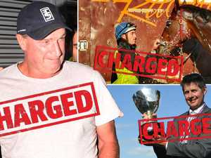 Weir's horses scratched after animal cruelty charges