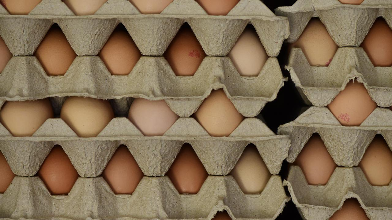 Authorities are asking people to check their eggs. Picture: Zoe Phillips.