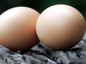 Salmonella warning issued for eggs