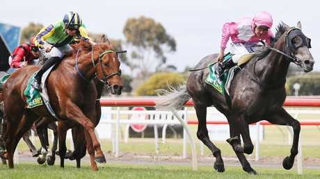 Urban Ruler wins at Geelong in October 2017 - his last victory. Picture: Getty Images