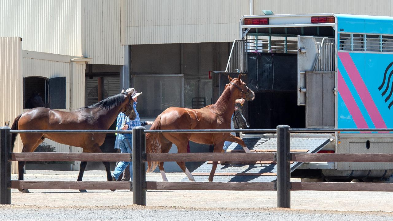 A float from the Ciaron Maher stables takes horses away from Darren Weir's Miners Rest stables. Picture: Jay Town