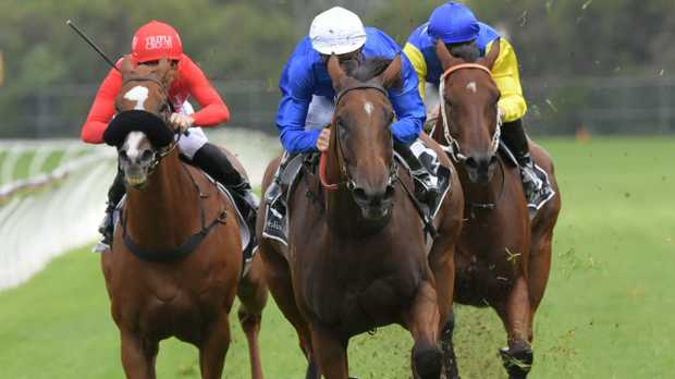 Blake Shinn rides Alizee to victory in the Expressway Stakes at Rosehill Gardens on Saturday. Picture: Simon Bullard/AAP